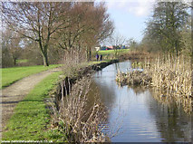 SD9201 : Looking west along the Fairbottom Branch Canal in Daisy Nook Country Park by Martin Clark