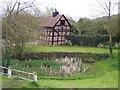 SO8031 : Eldersfield Village Pond by Bob Embleton