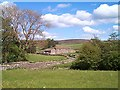 NY9738 : Aller Gill, Weardale, Co. Durham by Robin Somes