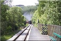 SE8394 : Newtondale Halt on the North Yorkshire Moors Railway by Martin Norman