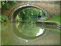 SP5972 : Canal at Crick by Stephen Dawson
