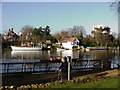 TQ1770 : River Thames near Canbury Gardens by steve