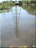 SJ5687 : Tadpoles and Pylons by Gary Rogers