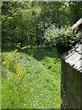 NH5857 : Open air Church by Dorcas Sinclair