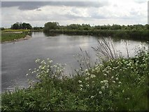 SK1814 : The River Tame and the National Memorial Arboretum by Angella Streluk