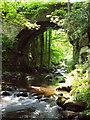 SE0024 : Spa Bridge near Spa Wood, Cragg Vale by Mark Anderson