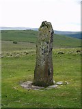 SX6685 : Menhir above Shovel down by Rowena Ford