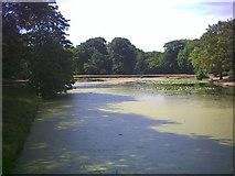 TQ2272 : Queen's Mere, Wimbledon Common. by Noel Foster