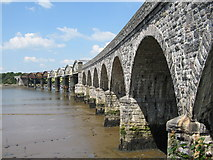 SX4561 : Railway Bridge over the River Tavy by Andrew Le Couteur Bisson