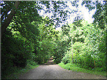 TQ5092 : Havering Country Park, Collier Row, Essex by John Winfield