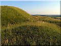 SU2986 : North Western Section of Uffington Castle Fort by Pam Brophy
