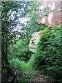 NT2863 : Crags, Roslin Glen by Richard Webb