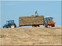 TQ0804 : Angmering Hay Making by Chris Shaw