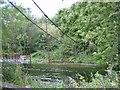 TQ0586 : Awkward bridge over River Colne Denham Country Park by Jack Hill