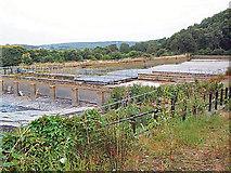 SE1839 : Esholt sewage works by David Spencer