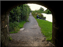 ST9761 : Towpath: Devizes by Pam Brophy