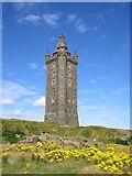 J4772 : Scrabo Tower up close by Dennis Reynolds