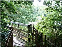 SD5811 : Footbridge at Worthington Lake Reservoir by David Hignett