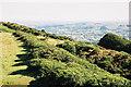 ST4101 : Pilsdon: Pilsdon Pen hill fort by Martin Bodman