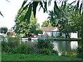 TQ0665 : Pharaoh's Island on the Thames by steve