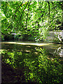 ST8476 : Reflections in the River: Castle Combe by Pam Brophy