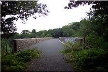 SX4975 : Wilminstone Viaduct, near Tavistock by Ron Strutt