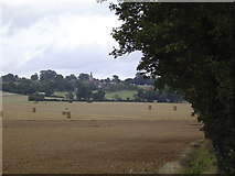 TQ9144 : Farmland near The Pinnock by John Brown