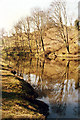 NT1876 : River Almond by Simon Johnston
