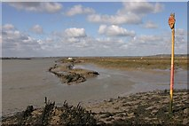 TQ8596 : View from North Fambridge by Andrew Pickess