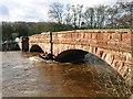 NY6423 : Bolton Bridge across the River Eden by A Walker