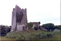 N0520 : Clonony Castle by Claire Ward