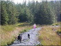 NX4095 : Path to Cornish Loch. by Tony Page