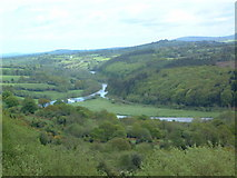 S7345 : The River Barrow by Brian Shaw