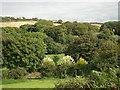 SW6139 : Roseworthy Valley by Tony Atkin