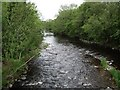 NY3749 : River Caldew at Dalston by John Gibson