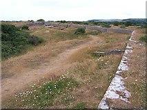 SX9456 : Northern Fort Ramparts, Berry Head by Garth Newton