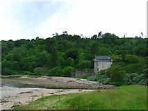 NR7831 : Saddell Castle, Kintyre. by Johnny Durnan