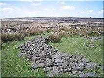 SK2775 : Barbrook Moor Stone Circle by Mark Kelly