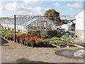 TQ0486 : Plant nursery in Denham by David Hawgood