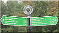 TQ2087 : Sign for Capital Ring walking route at Brent Reservoir by David Hawgood