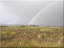 H5274 : Rainbow by Kenneth  Allen