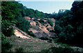 SX4372 : Mine spoil dumps, near Gunnislake by Crispin Purdye