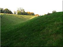 SU1070 : Circular Ditch at Avebury by Pam Brophy