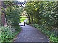 TQ2593 : Laurel Walk, Totteridge by Christine Matthews