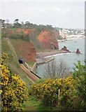 SX9675 : Railway tunnel and Shell Cove, Dawlish by Tony Atkin