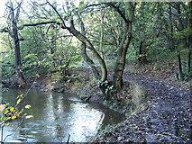 SE2332 : Pudsey Beck by John Illingworth