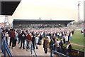 TQ2805 : Hove: The Goldstone Ground by Nigel Cox