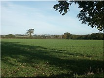 TG1408 : Field above Bawburgh by Katy Walters