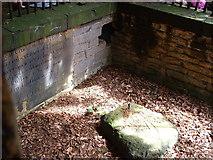 SE1721 : Robin Hood's Grave by Nigel Homer