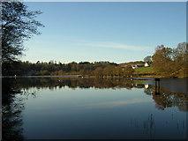NS5379 : Carbeth Loch by Iain Thompson